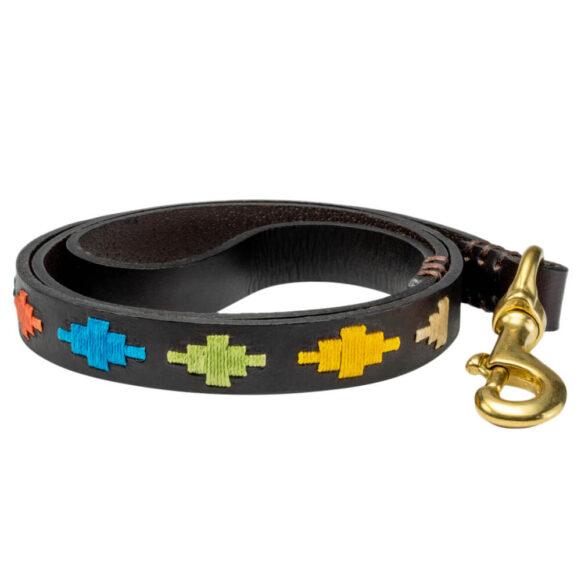 Rainbow Inca Polo Dog Lead - Vegetable tanned stirrup leather - Brass