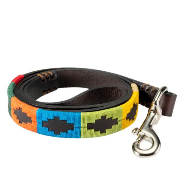 Rainbow Polo Dog Lead - Gaucho Belt - Vegetable tanned Leather - Nickel
