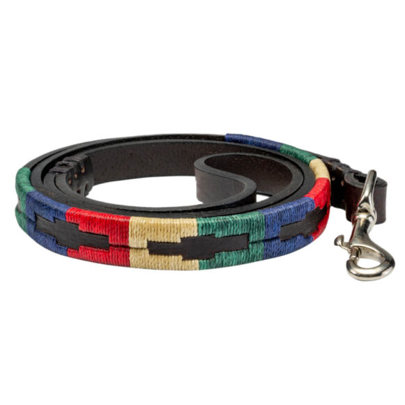 Traditional Polo Dog Lead - Gaucho Belt - Vegetable tanned Leather - Brass