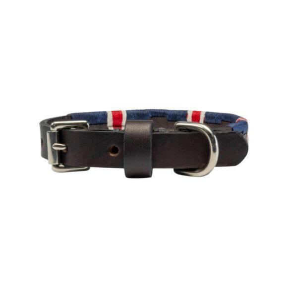 British Team polo dog collar   Argentinian Gaucho Collar   Miniature and Puppy   Nickel