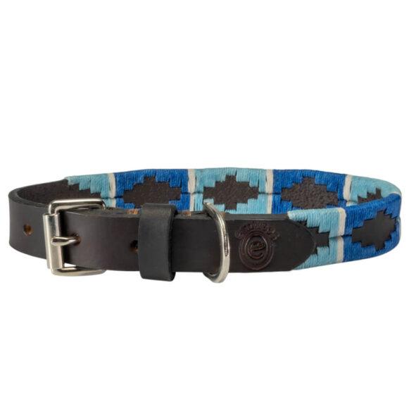 Blue polo dog collar | Argentinian Gaucho Collar | Nickel